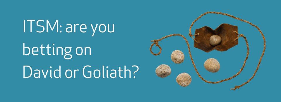 David and Goliath – who are you betting on?